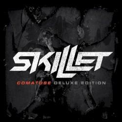 Skillet - Rebirthing (Acoustic)