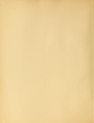 Album De Broderies Au Point De Croix Dillmont Therese De 1846 1890 Free Download Borrow And Streaming Internet Archive